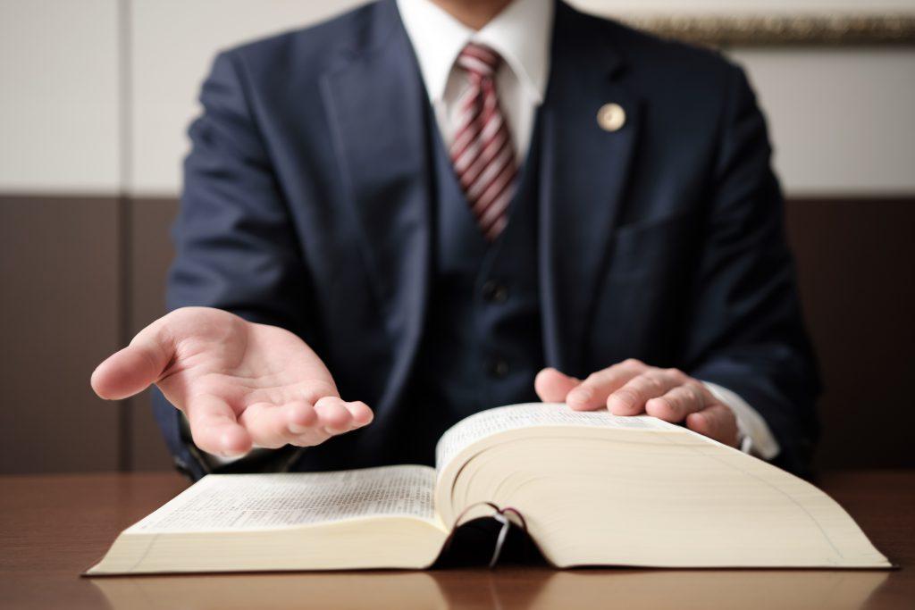 ロミ法律事務所(その他の取り扱い業務)